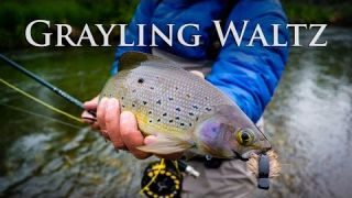 Grayling Waltz | Alaska Grayling Fishing